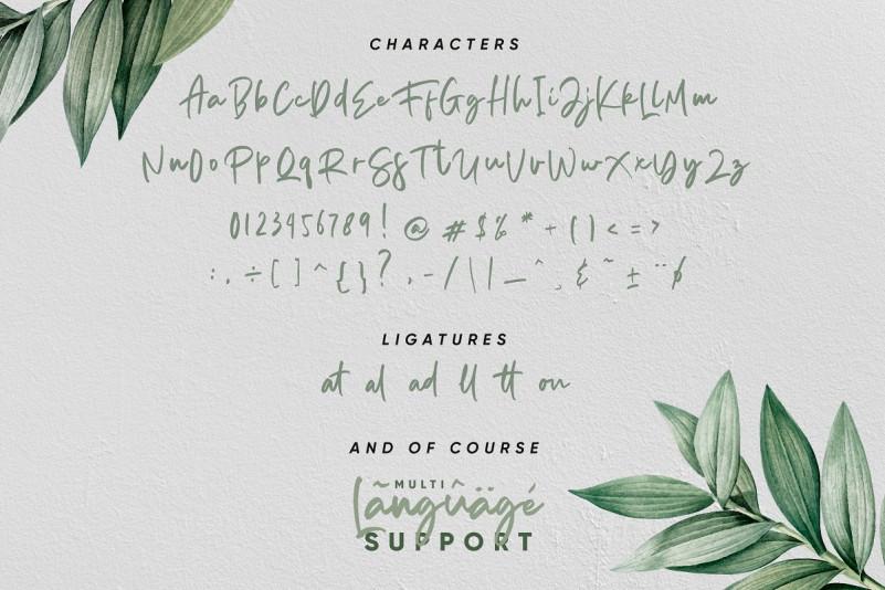 Aedesty Handwritten Font