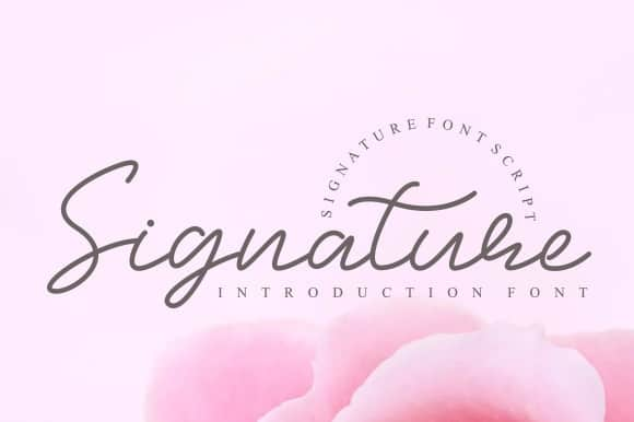 Signature Script Font Free Download [Direct Link]