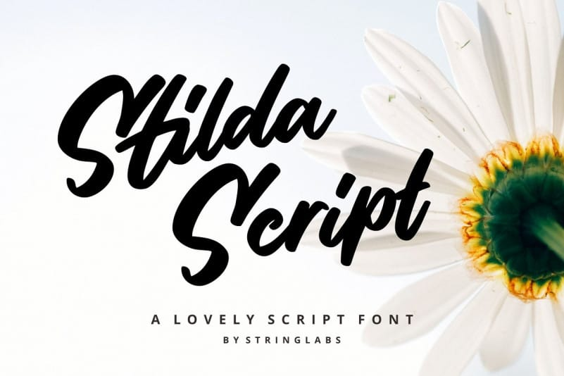 Stilda Script Free Download [Direct Link]