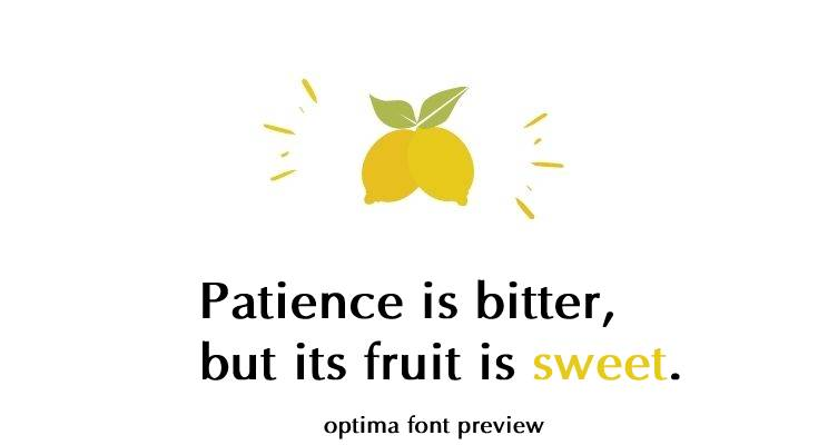 optima bold font preview